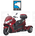 Ice Bear Dirt Bikes